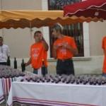 Marathon du Medoc 2009 (2)