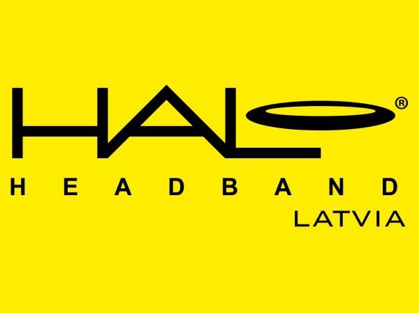 dzeltens_liels_logo