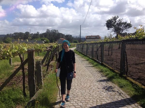 Santjago ceļu staigājot