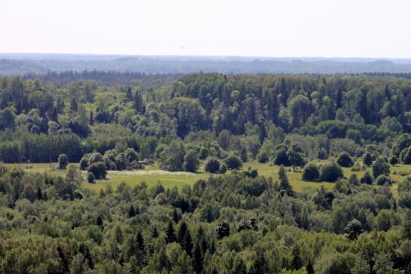 Latgale3